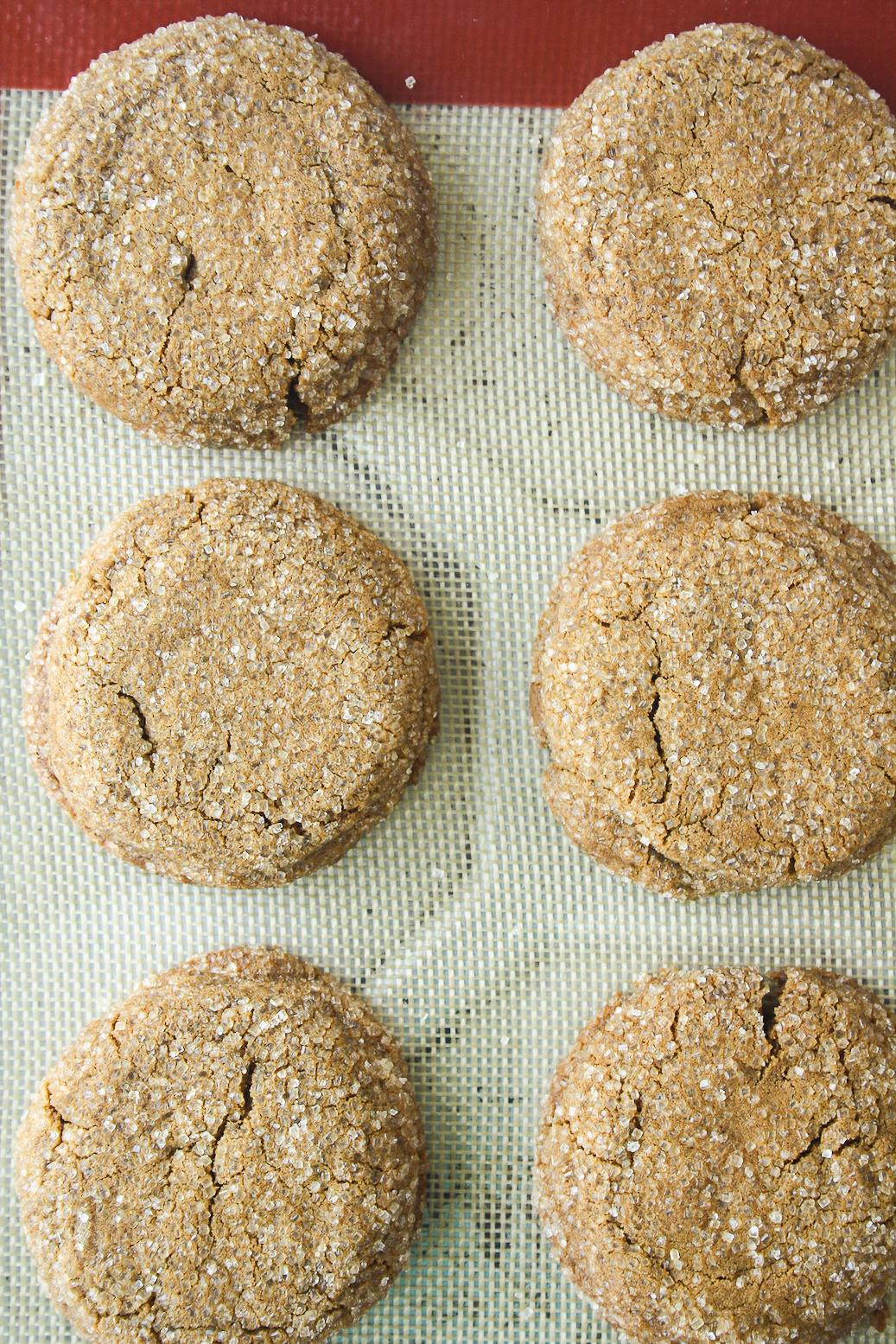 Soft and chewy, festive ginger cookies with cinnamon and molasses!