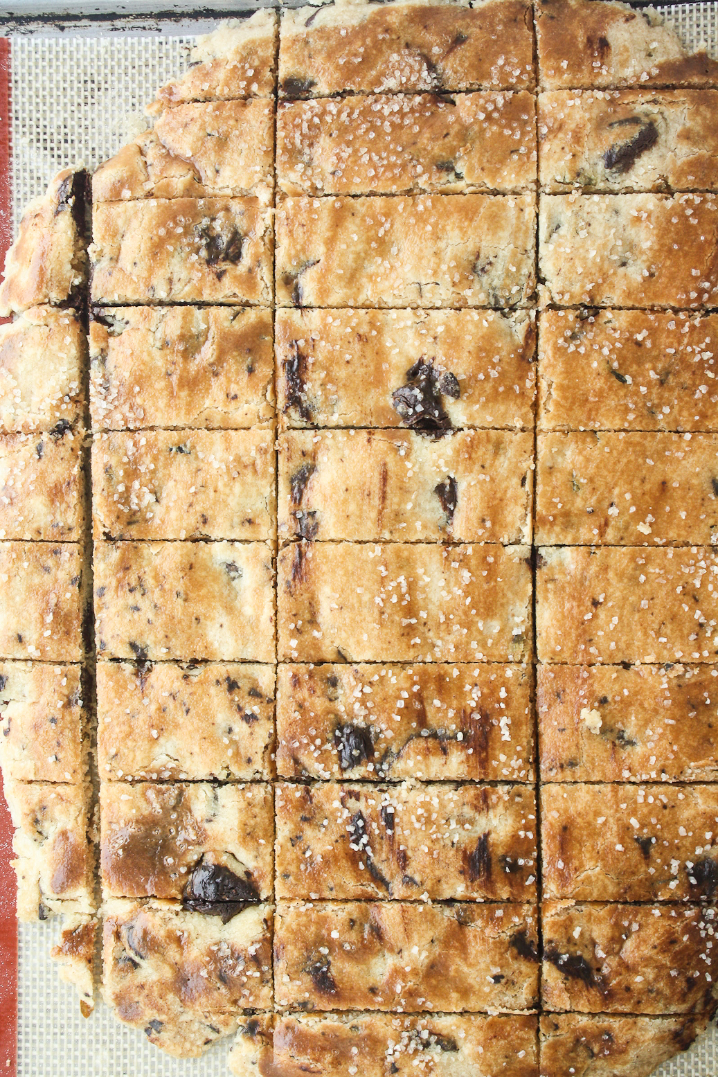 Crunchy, flavourful shortbread with chocolate chunks, olive oil and fresh rosemary!